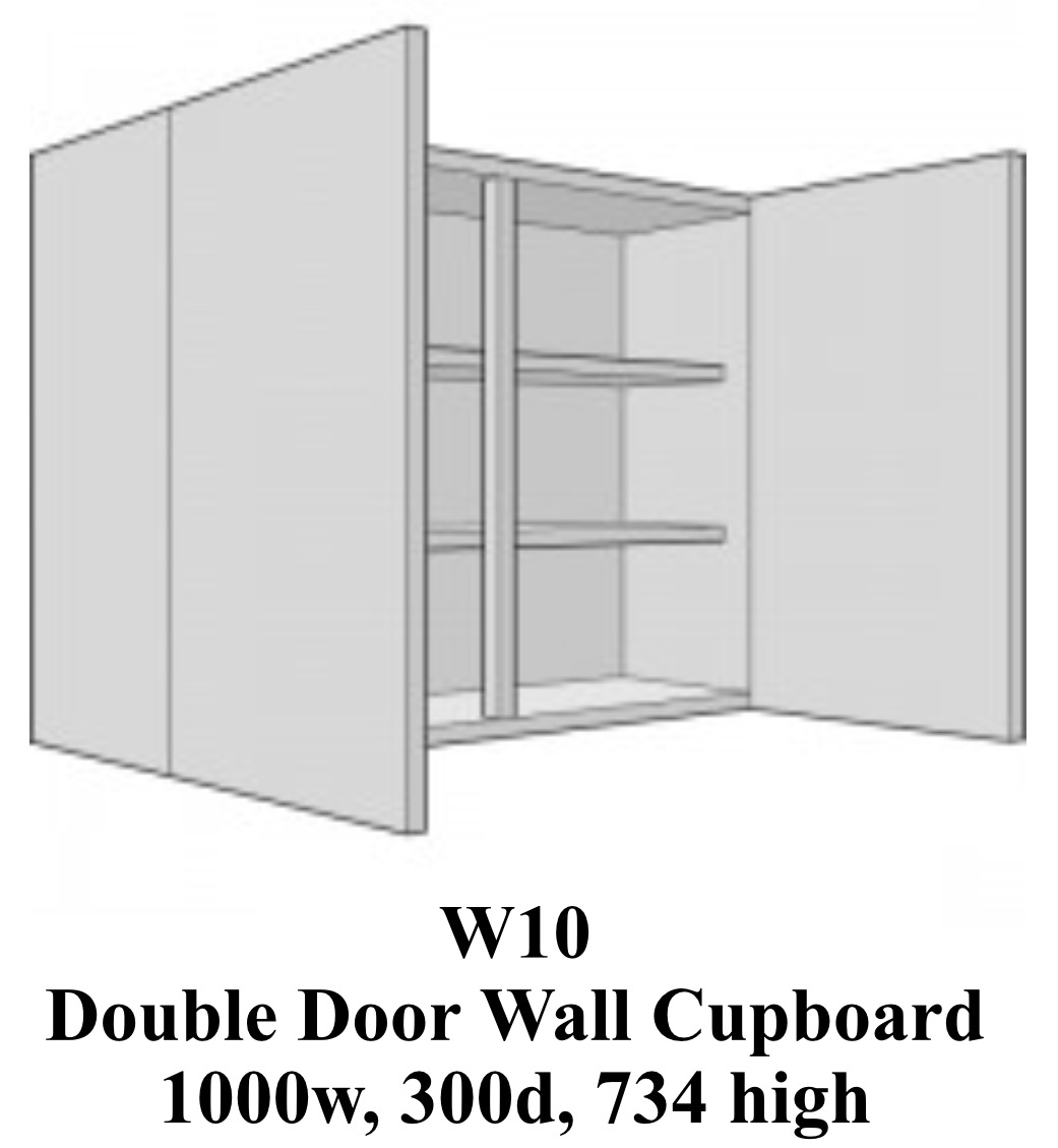 Double  door laboratory classroom wall cabinet 1000 wide